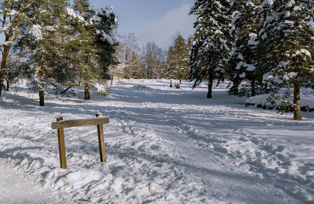 Kivikirkonpuiston luminen maisema ja pulkkamäki