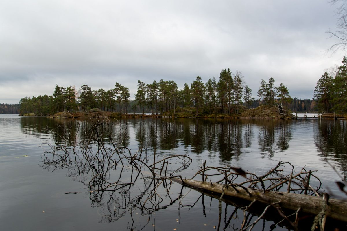 Syysretki Pukala 2021 - Maisema laavulle johtavalta polulta.