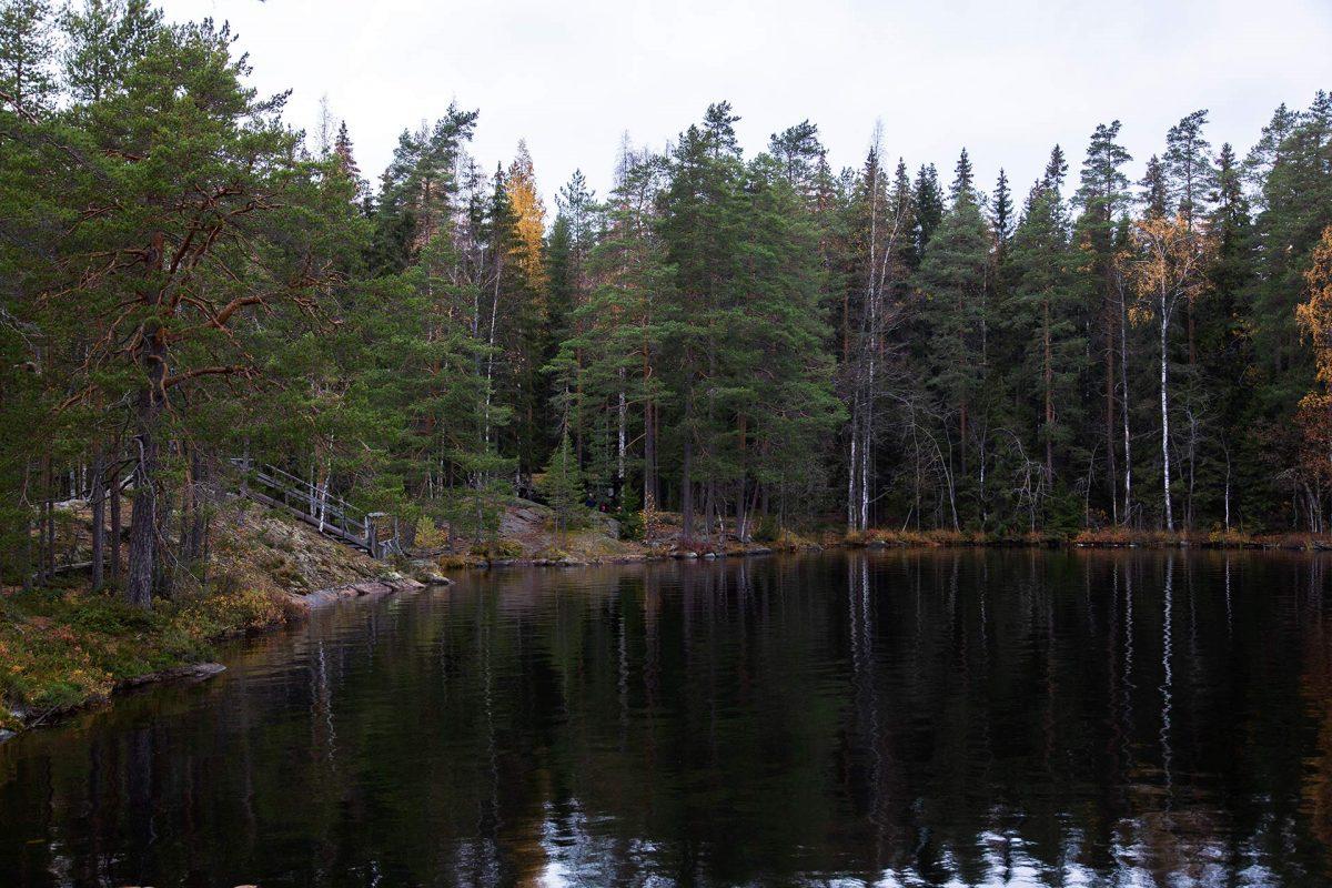 Syysretki Pukala 2021 - Maisema Roninmaan laavulle